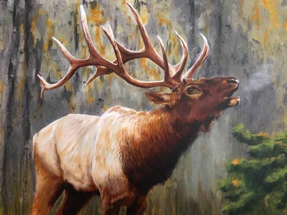 Elk by Linda Allegre